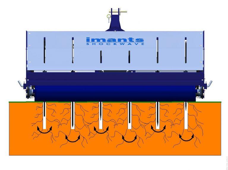 Imants Shockwave animation